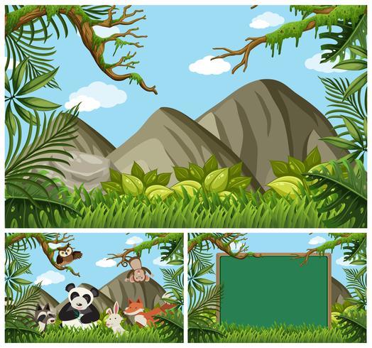 Scènes de fond avec des animaux dans les bois