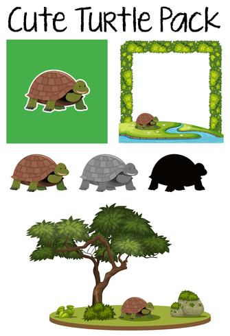 A pack of turtle