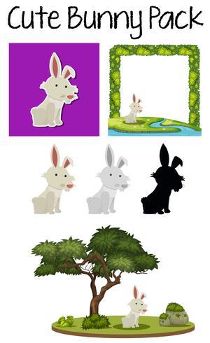 Ett paket med kanin