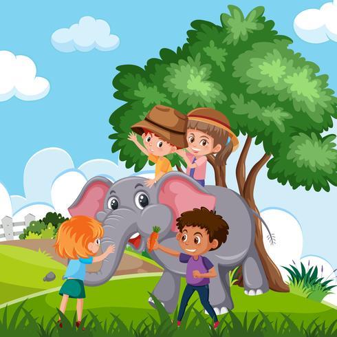 Barn som rider elefant i naturen