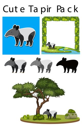 A pack of cute tapir
