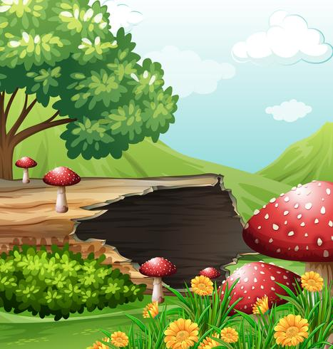 Scene with wooden log and mushrooms