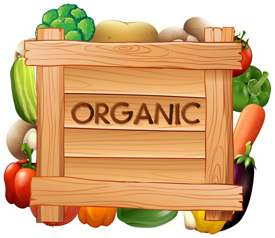 Organic sign and many types of vegetables vector