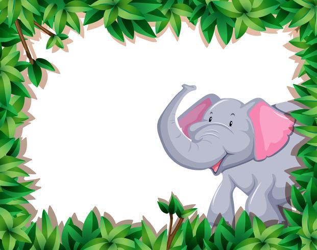Elephant on nature border