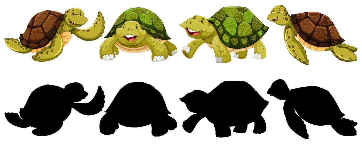 Set van schildpad karakter