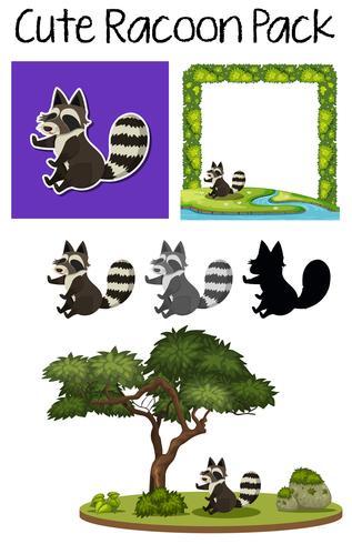 A pack of cute raccoon