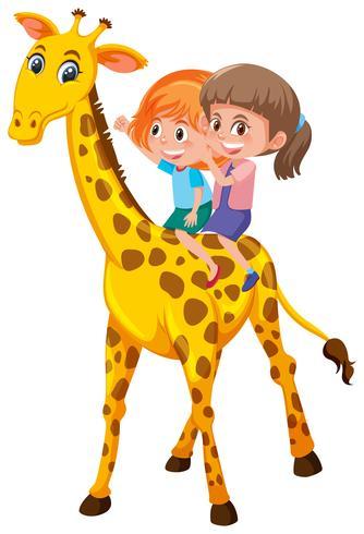 Filles chevauchant une girafe sur fond blanc