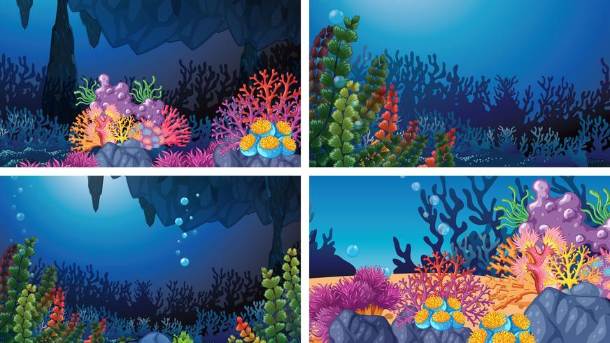 Set van onderwater koraal scènes