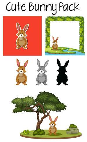 Een pak konijnen