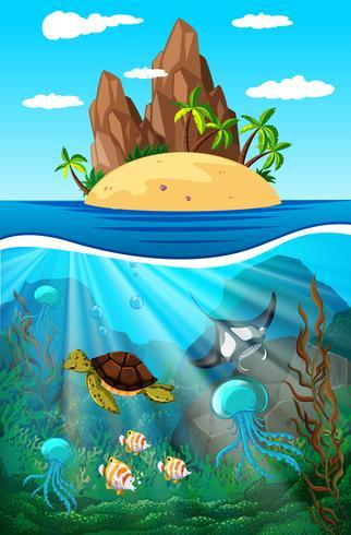 Havsdjur simma under vattnet vektor
