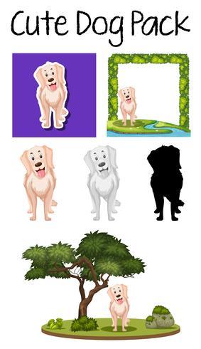 Un branco di simpatici cani