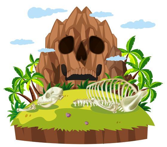 Animal skull on island