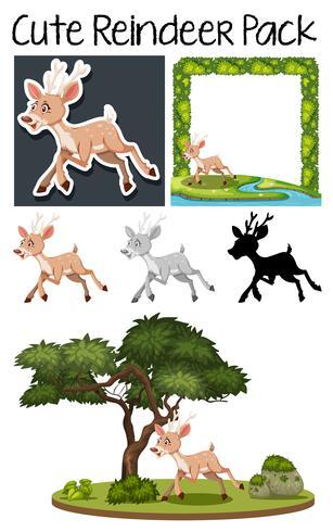A pack of cute deer