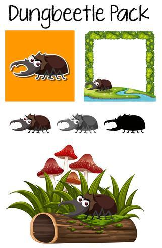 Un paquete de escarabajo pelotero vector