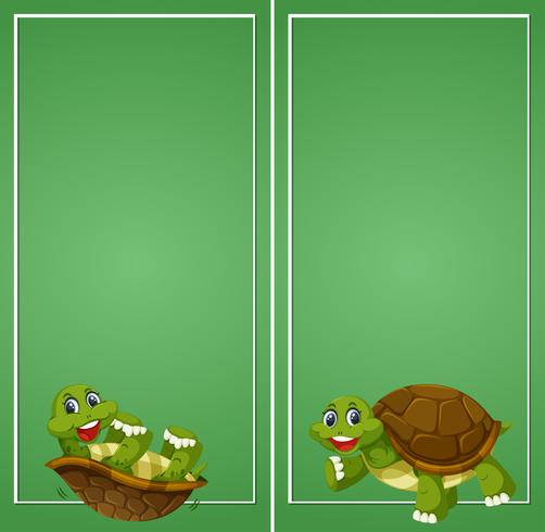 Turtle on green border