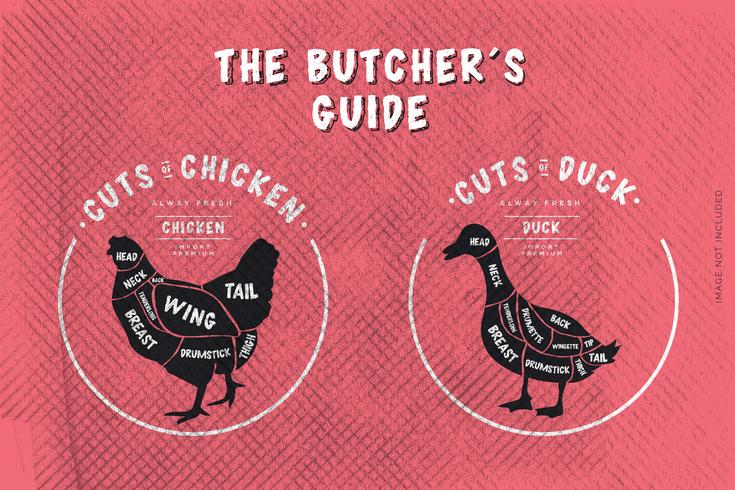 Le guide du boucher, coupe de poulet et de canard