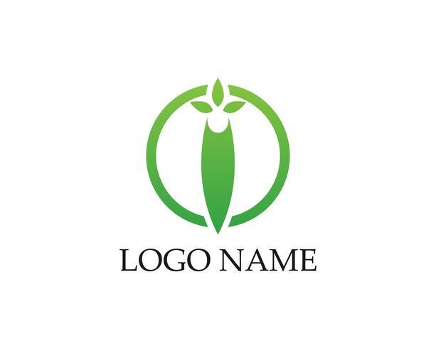 Logoer av grönt blad ekologi naturelement vektorikonen