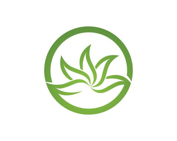 hoja verde ecología naturaleza elemento vector icono ...