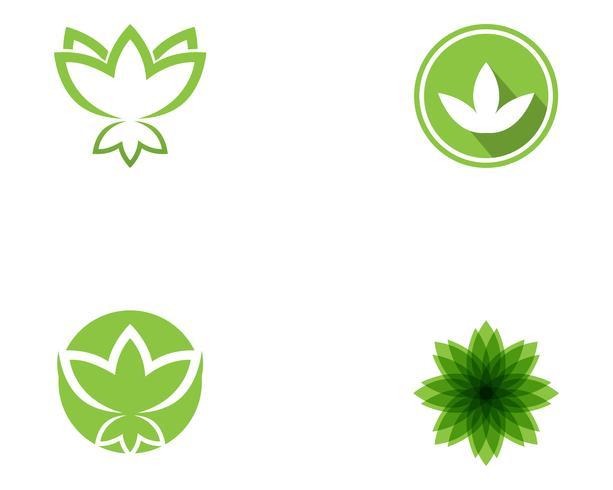 Lotus Flower Sign för Wellness, Spa och Yoga. Vektor illustration ..