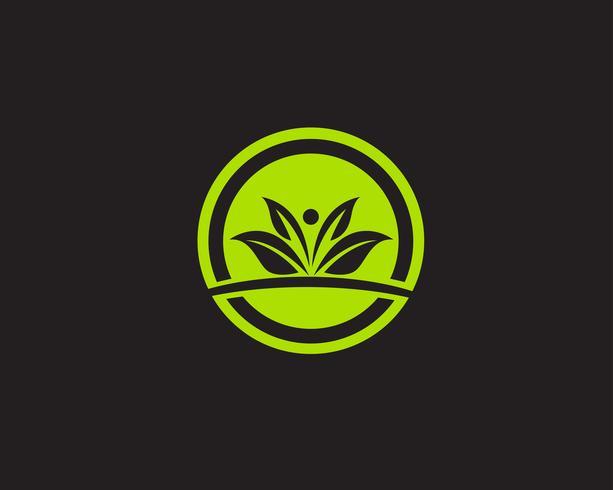 Icône de vecteur logos feuille verte écologie nature élément