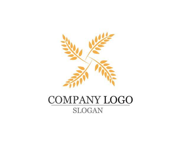 Reis essen Mahlzeit Logo und Symbole Vorlage Symbole