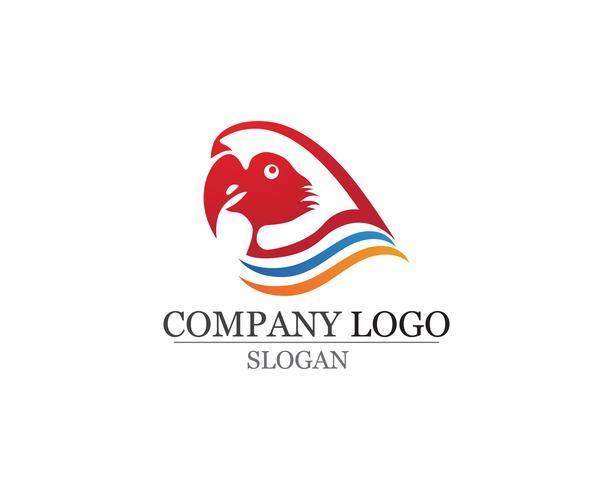 Plantilla de logotipo y símbolos de aves vector color rojo