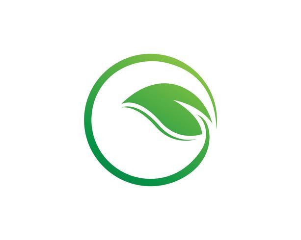 grön blad ekologi naturelement vektor ikon