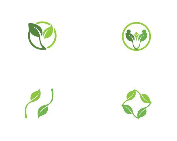 grünes Blatt Ökologie Natur Element Vektor-Icons