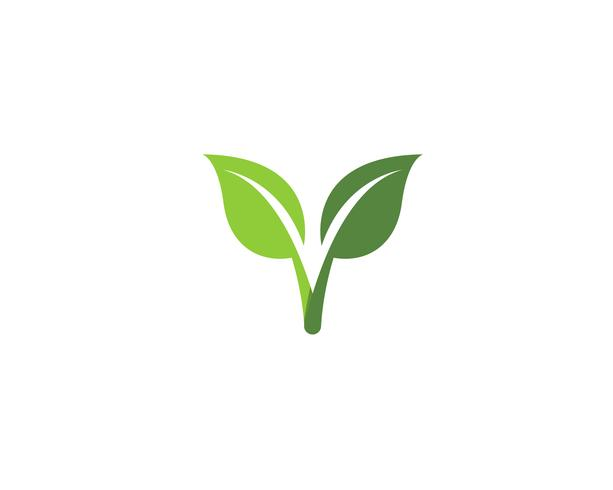 groene blad ecologie natuur element vector iconen