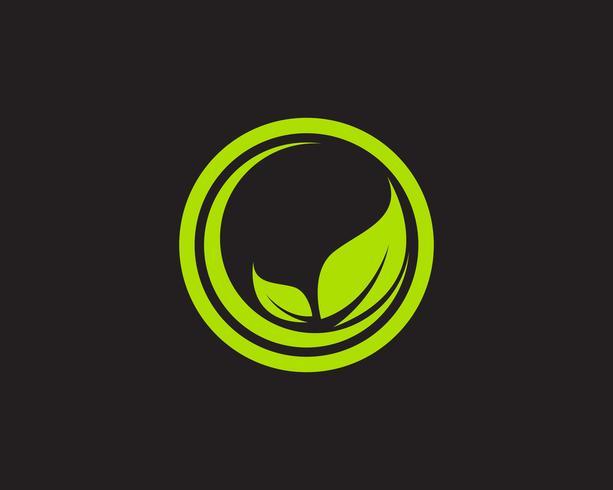 Blattökologie-Naturelement-Vektorikone der Logos grüne