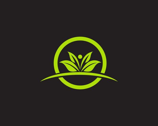 Logoer grön blad ekologi naturelement vektor ikon