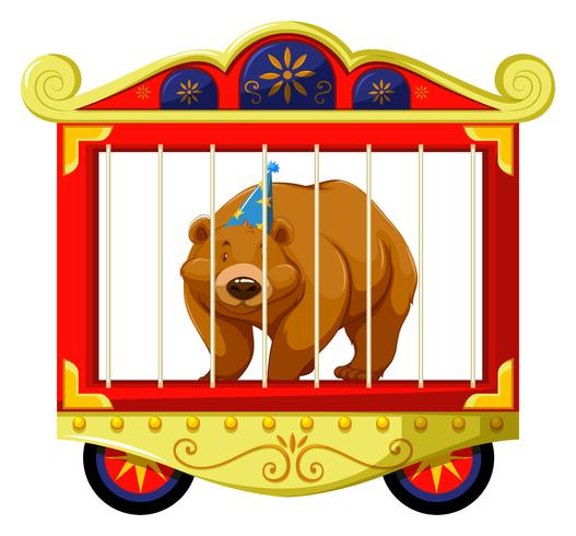 Grizzly bear in the circus cage
