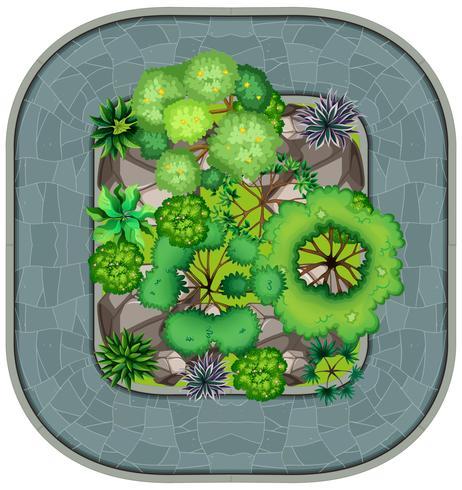 Una vista aérea del jardín. vector