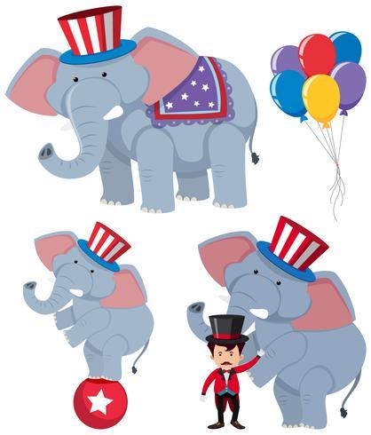 Um conjunto de elefantes de circo