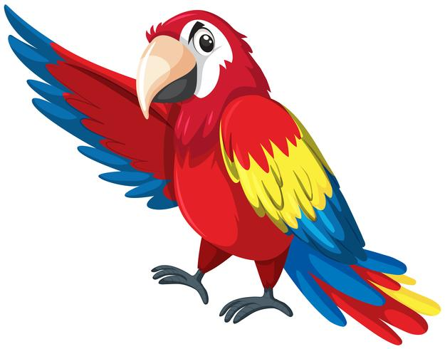 A colourful parrot character