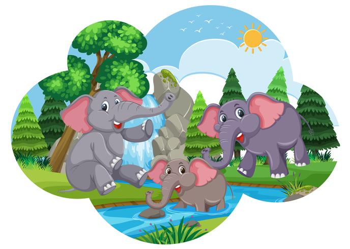 Cute elephants playing in water