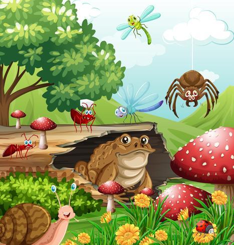 Diferentes tipos de insectos en el jardín durante el día.