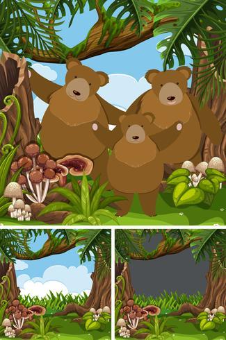 Familia de osos pardos en la selva.