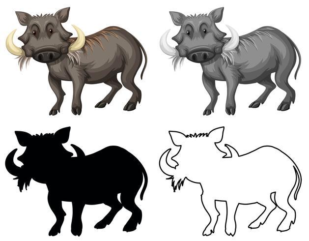 Set of warthog character