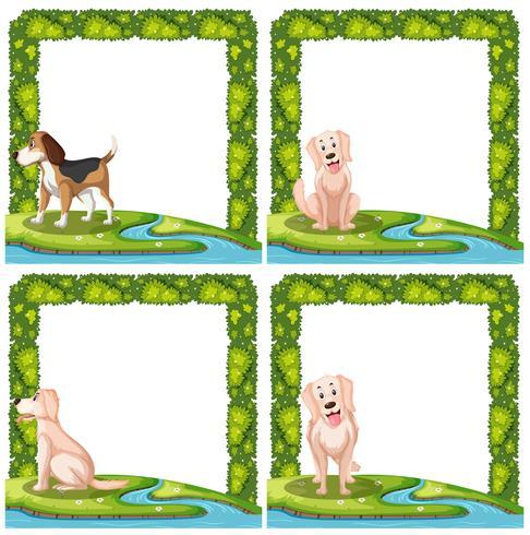 Set av hundar ramscener