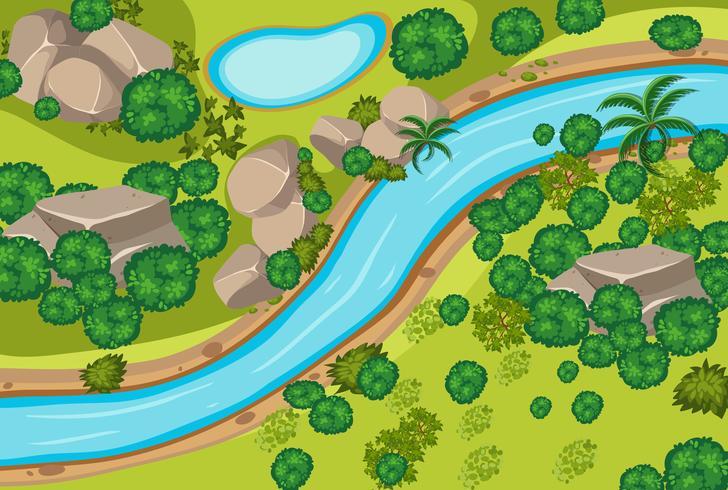Luchtfoto van het bos en de rivier