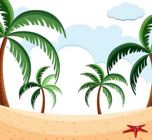 Strandscène met palmen