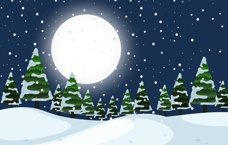 Eine Nachtszene des Winters im Freien