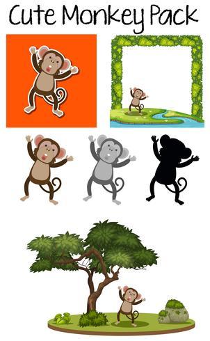 A pack of cute monkey