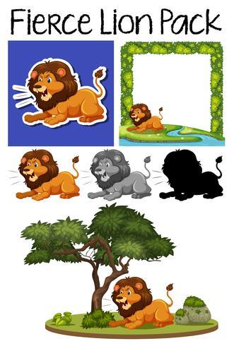 Un paquet de lion féroce