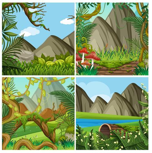 Un paisaje de bosque natural
