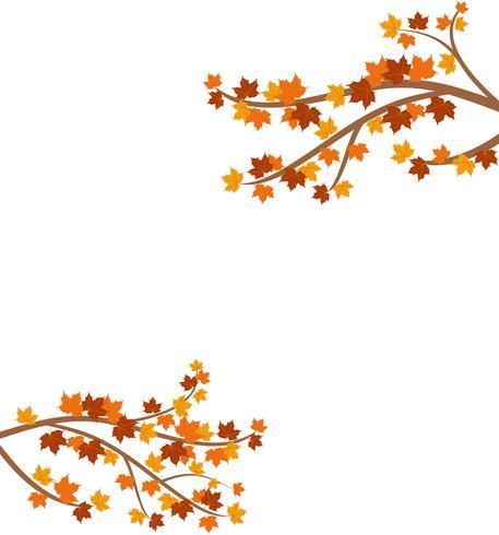 Tak met de bladeren van de de herfstesdoorn op achtergrond worden geïsoleerd - Vectorillustratie