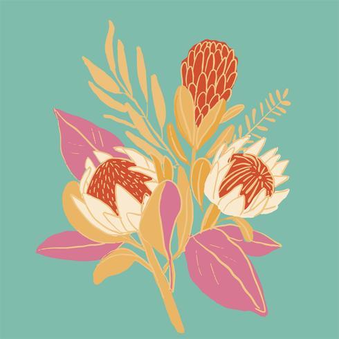 König Protea Hand gezeichnet mit Entwurfsgrafikdesignvektor