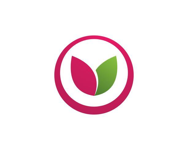 blad lotusbloem logo en symbolen vector