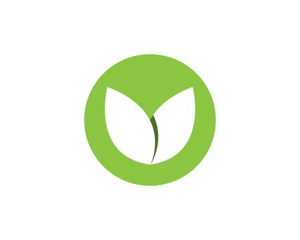 Fleur de famille Logo et application d'icônes SymbolTemplate
